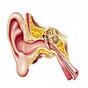 דלקת באוזן החיצונית